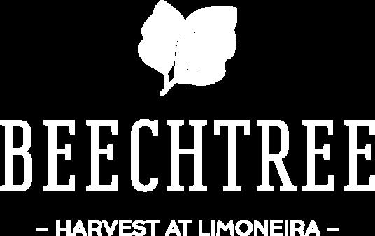 HaL Beechtree Logo White