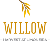 HaL Willow Logo Color